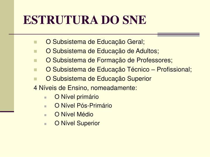 ESTRUTURA DO SNE