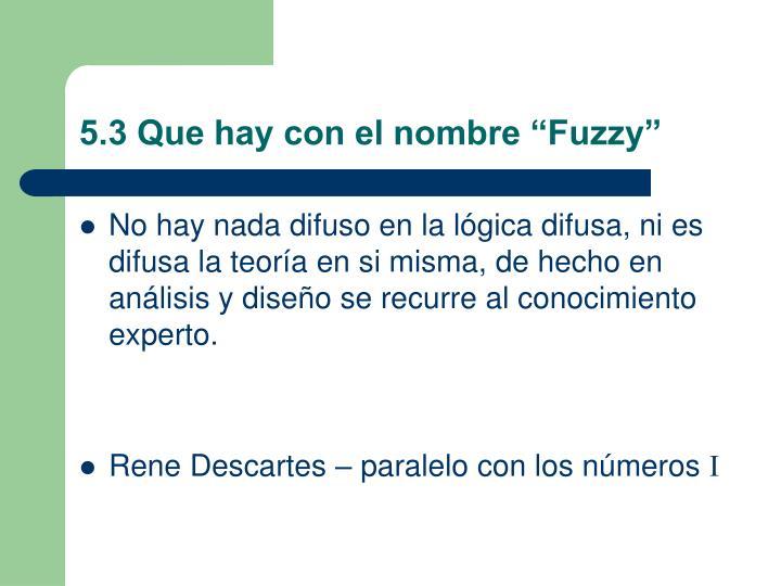 """5.3 Que hay con el nombre """"Fuzzy"""""""