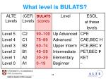 what level is bulats1