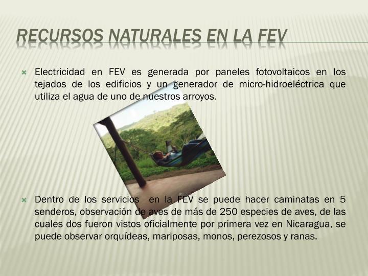 Electricidad en FEV es generada por paneles fotovoltaicos en los tejados de los edificios y un generador de micro-hidroeléctrica que utiliza el agua de uno de nuestros arroyos.