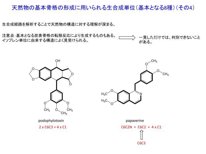 天然物の基本骨格の形成に用いられる生合成単位(基本となる