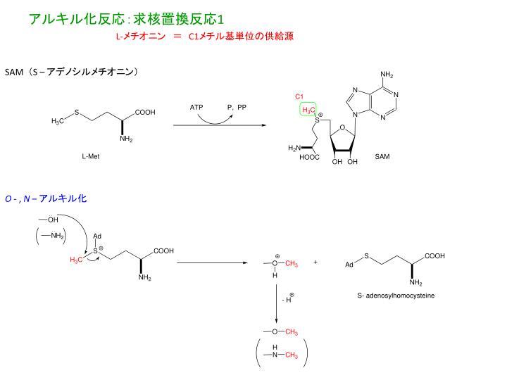 アルキル化反応:求核置換反応