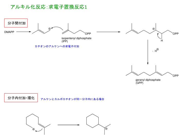 アルキル化反応:求電子置換反応