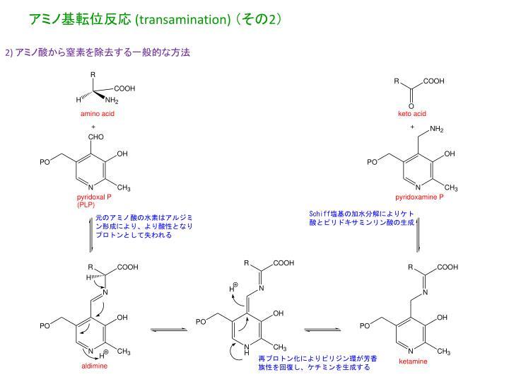 アミノ基転位反応