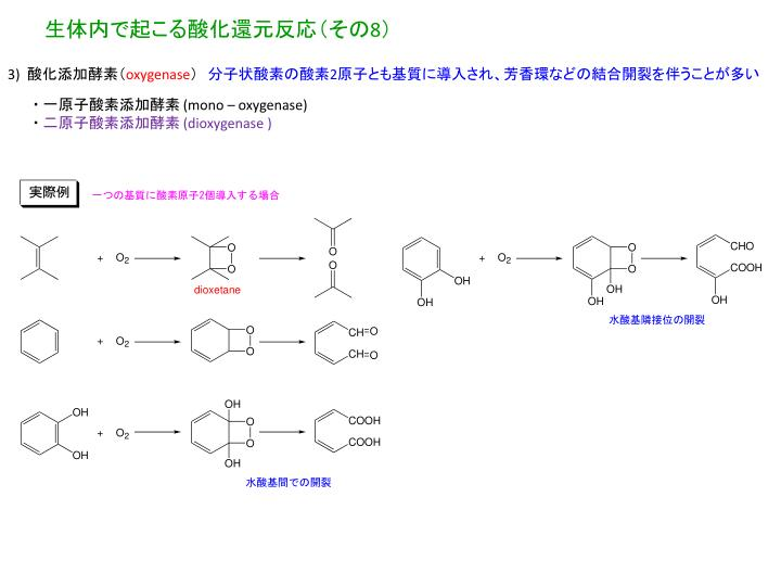 生体内で起こる酸化還元反応(その