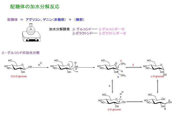 配糖体の加水分解反応