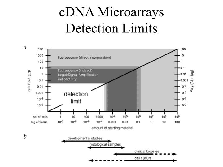 cDNA Microarrays