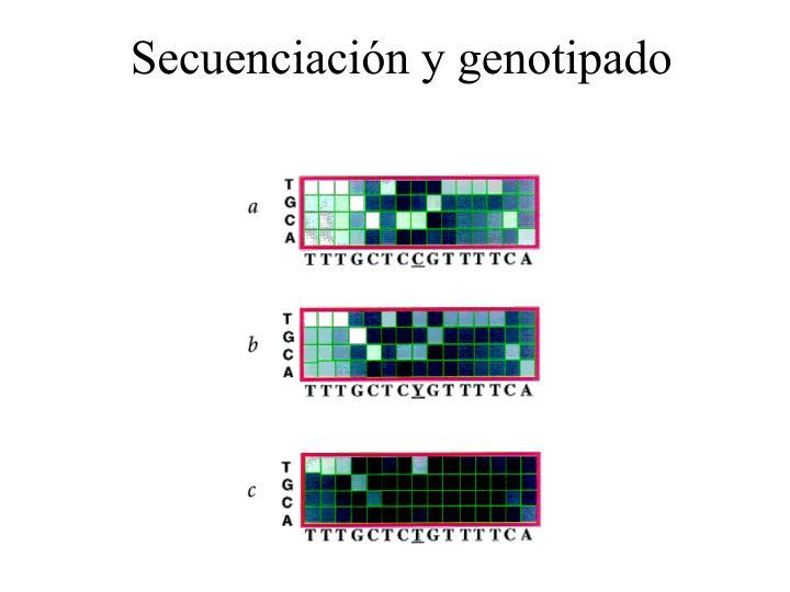 Secuenciación y genotipado