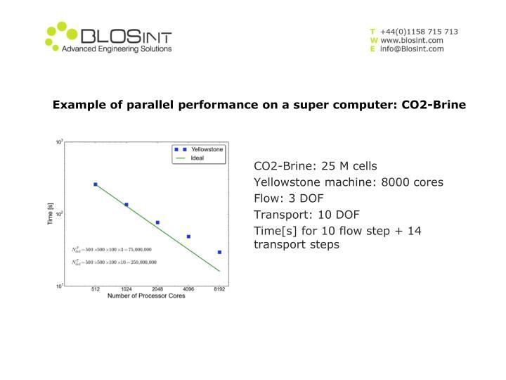 CO2-Brine: 25 M cells