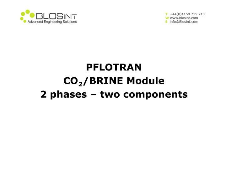 PFLOTRAN