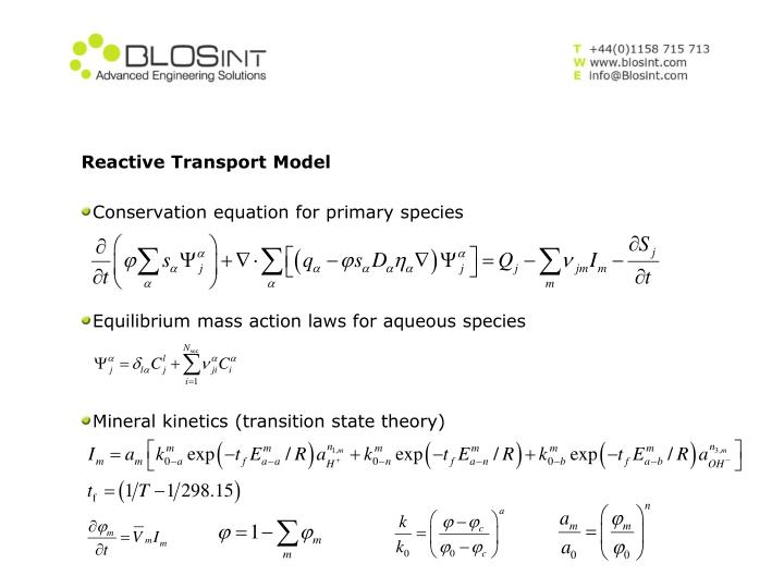 Reactive Transport Model