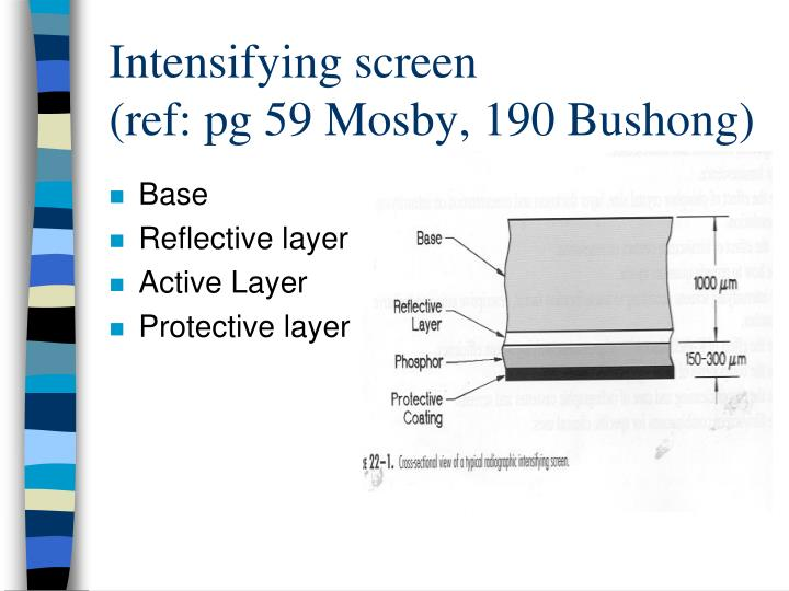 Intensifying screen ref pg 59 mosby 190 bushong