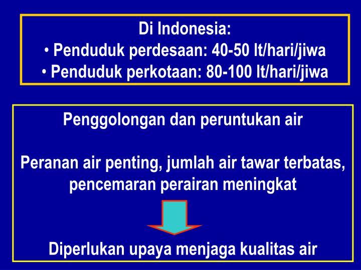 Di Indonesia: