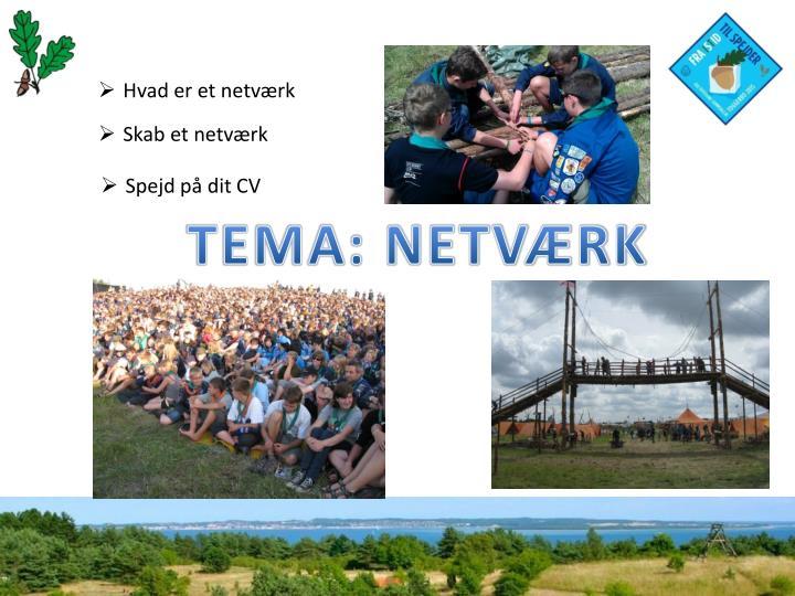 Hvad er et netværk