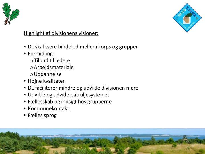 Highlight af divisionens visioner: