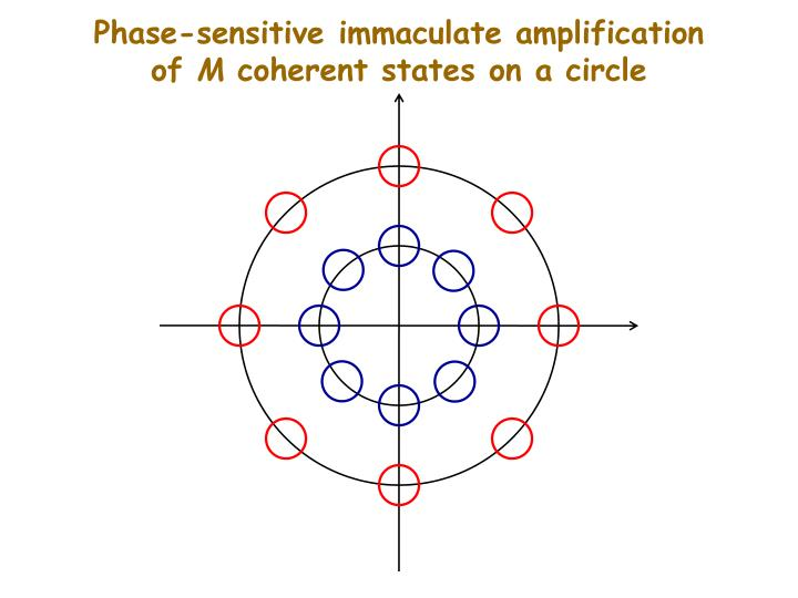 Phase-sensitive immaculate amplification of