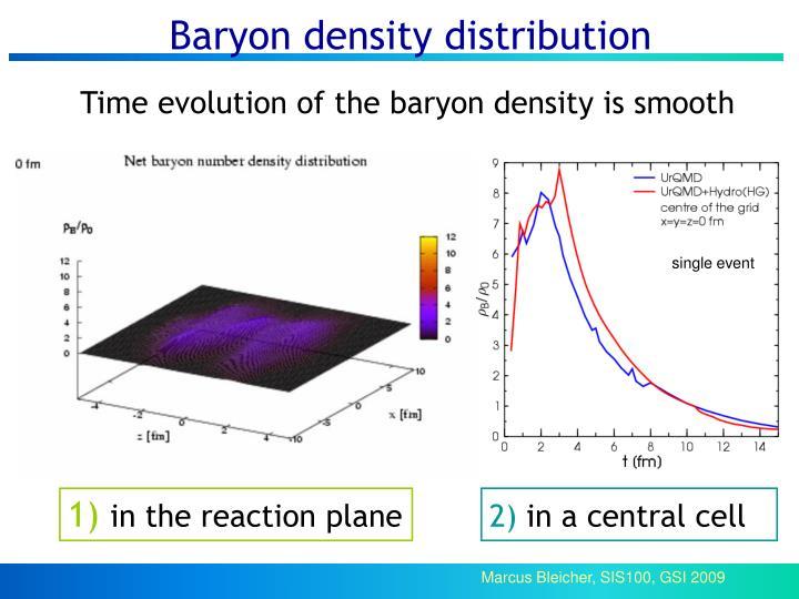Baryon density distribution