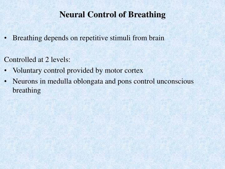 Neural Control of Breathing