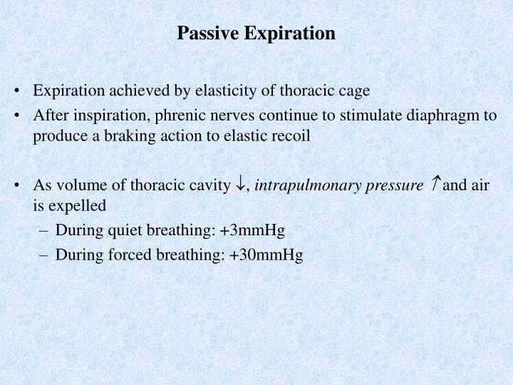 Passive Expiration