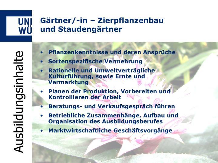 Gärtner/-in – Zierpflanzenbau