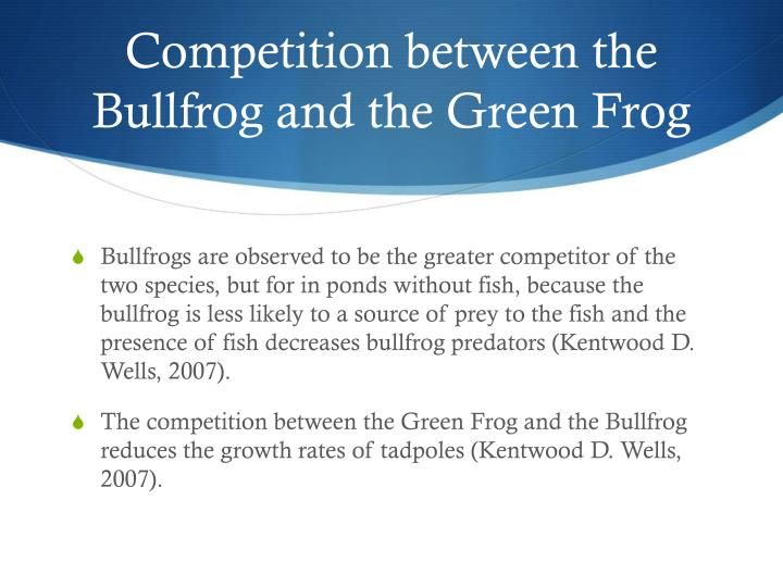 Competition between the Bullfrog and the Green Frog