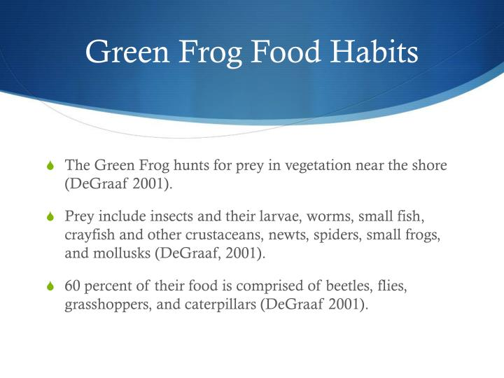 Green Frog Food Habits