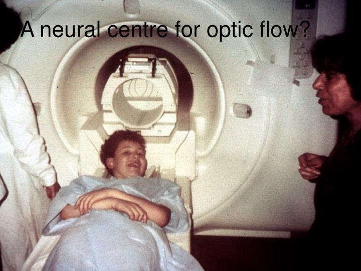 A neural centre for optic flow?