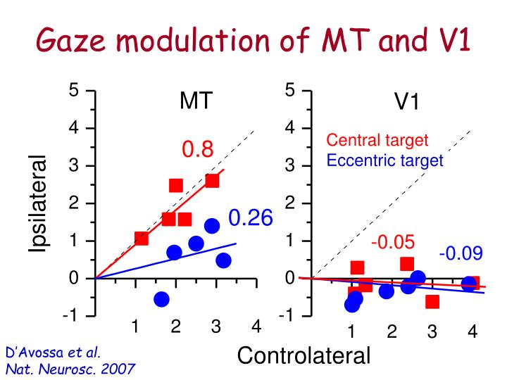 Gaze modulation of MT and V1