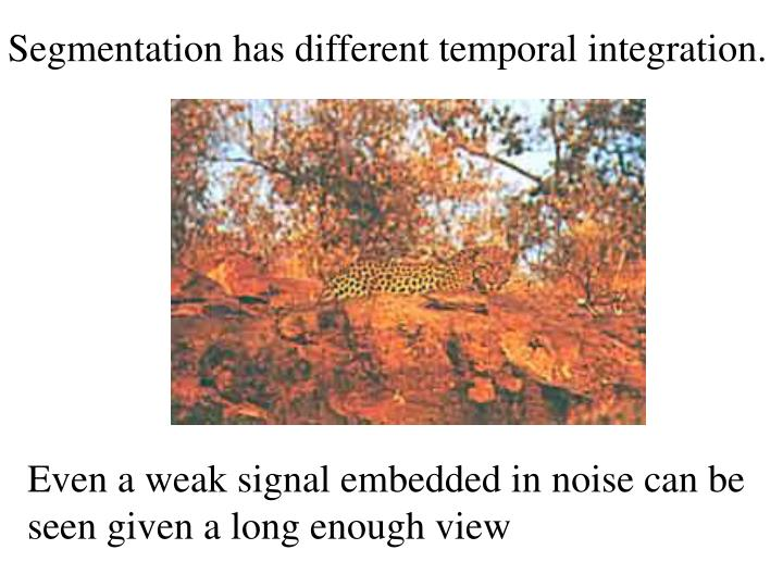 Segmentation has different temporal integration.