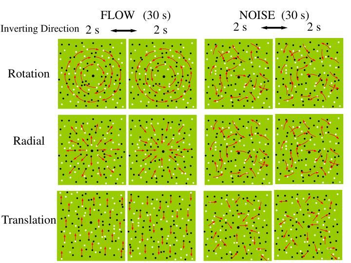 FLOW  (30 s)    NOISE  (30 s)