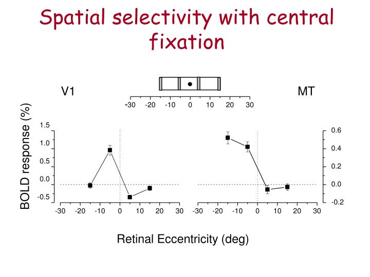 Spatial selectivity with central fixation