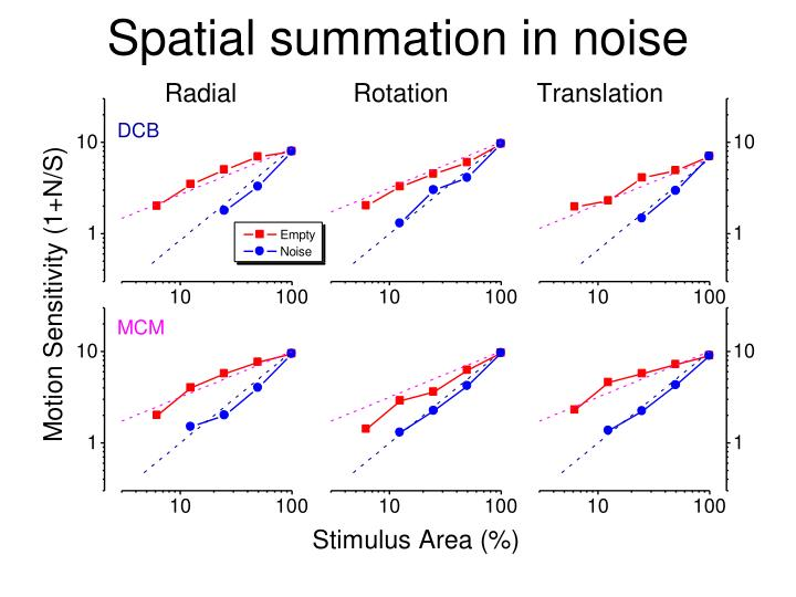 Spatial summation in noise
