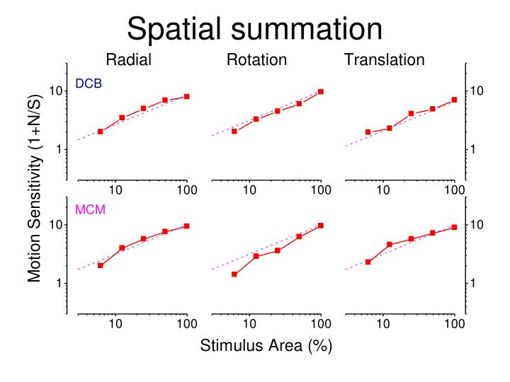 Spatial summation