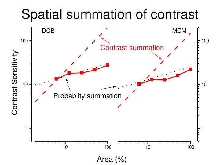 Spatial summation of contrast