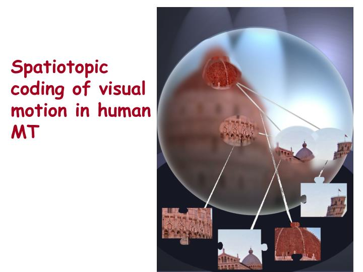 Spatiotopic coding of visual motion in human MT