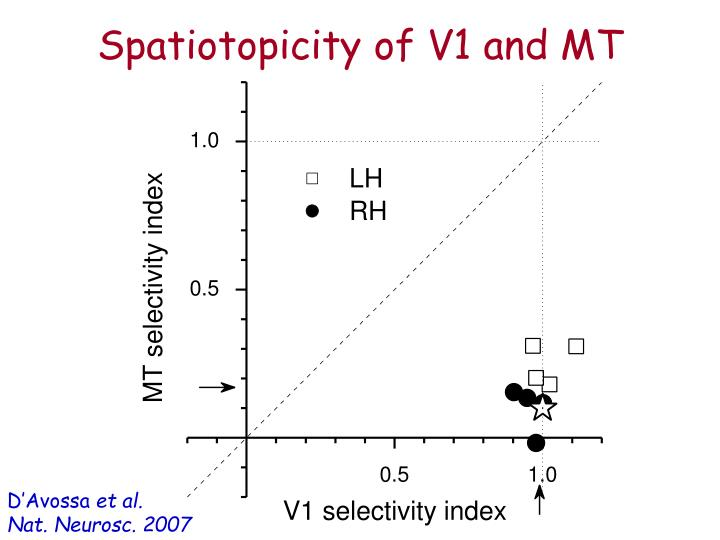 Spatiotopicity of V1 and MT