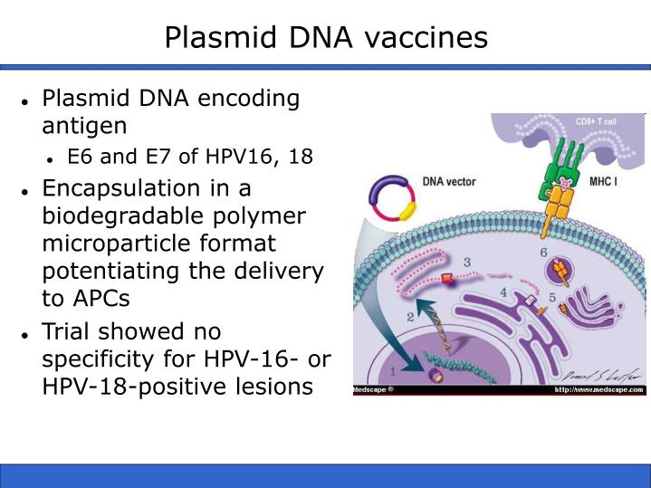 Plasmid DNA vaccines