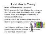 social identity theory1