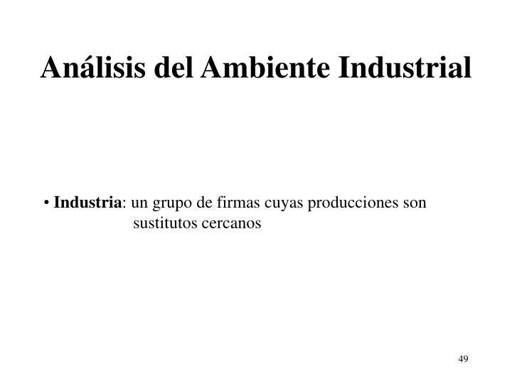 Análisis del Ambiente Industrial