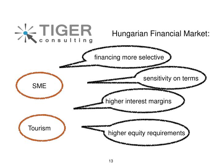 Hungarian Financial Market:
