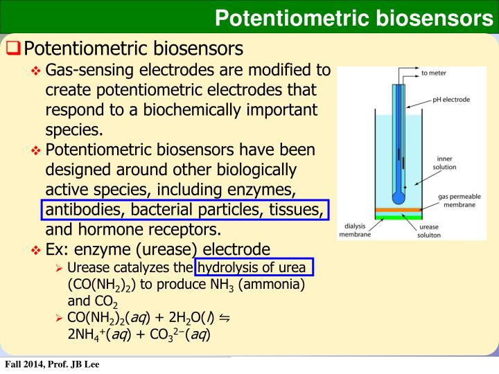 Potentiometric biosensors
