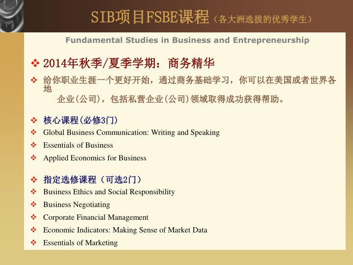 SIB项目