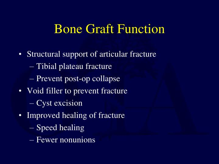Bone graft function