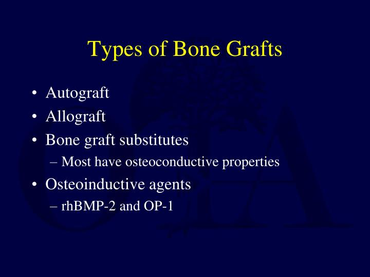Types of Bone Grafts