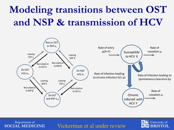 Modeling transitions between OST and NSP & transmission of HCV