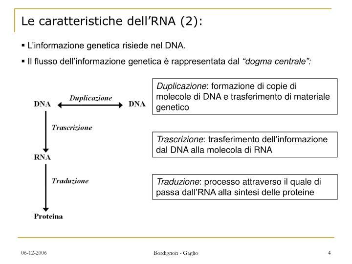 Le caratteristiche dell'RNA (2):