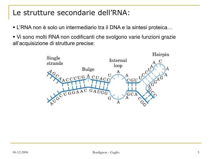 Le strutture secondarie dell'RNA: