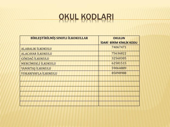 OKUL KODLARI