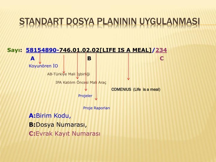 Standart Dosya PlanInIn UygulanmasI