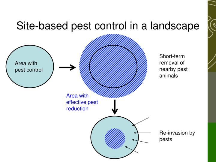 Area with pest control